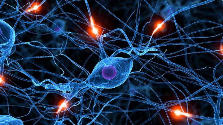 شبکه عصبی-02