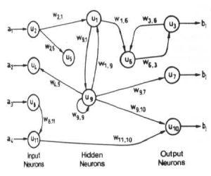 شبکه عصبی-پس خور