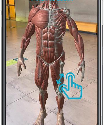 Anatomy-app